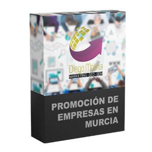 Promoción de empresas, marca, productos y servicios por internet